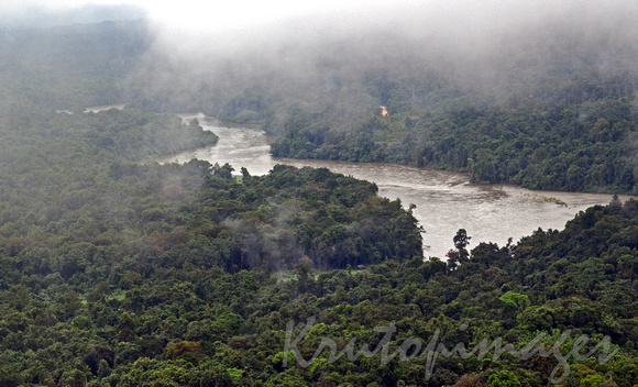 PNG jungle and river