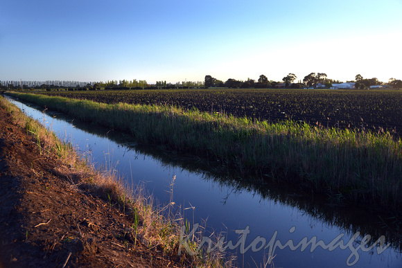 Drain systems South Gippsland Dalmore at sunrise